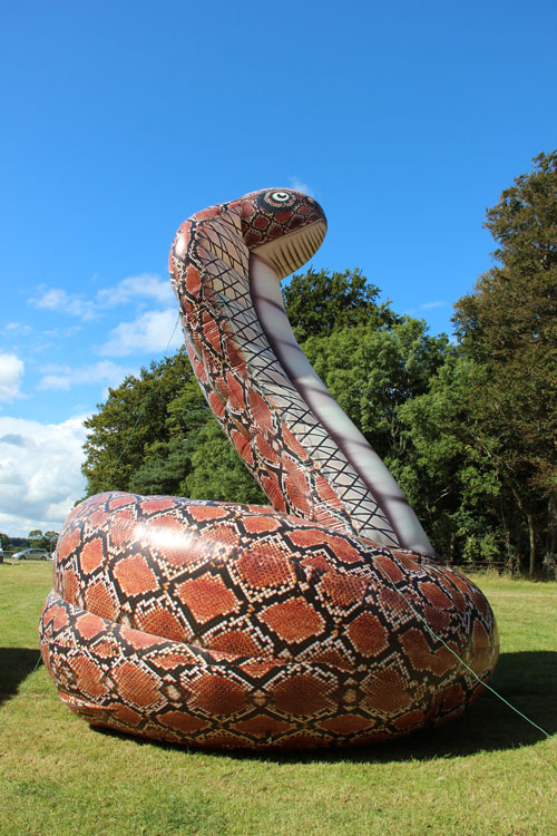 Giant Snake | Anglesey Bouncy Castle Hire - photo#9