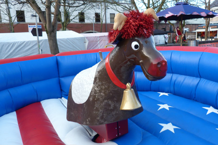 Rodeo Reindeer Christmas Hire