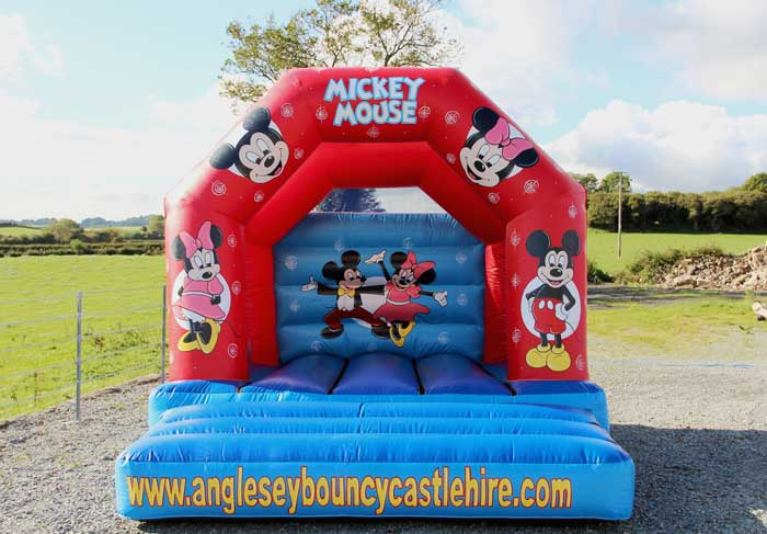 Mickey and Minnie Bouncy Castle