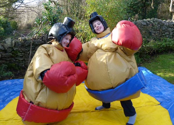 Junior Sumo Inflatable