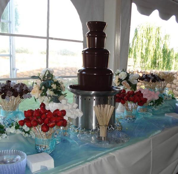 Chocolate fountain 4